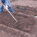 Suitable soil for vegetable growing